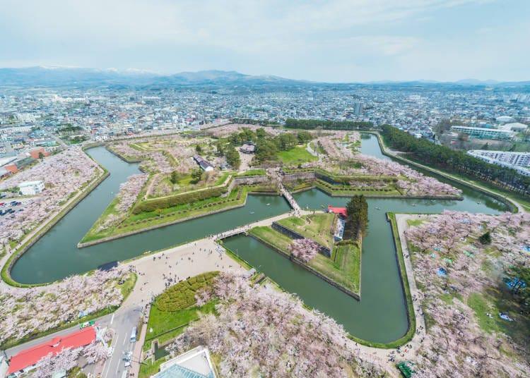 2. Goryokaku Park: Enjoy Hokkaido cherry blossoms from the sky