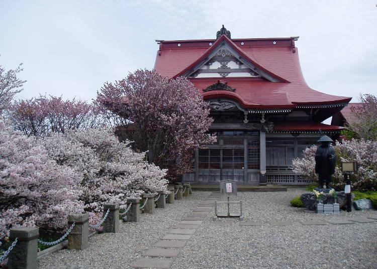 8.遅咲きの桜の名所「清隆寺」【道東】