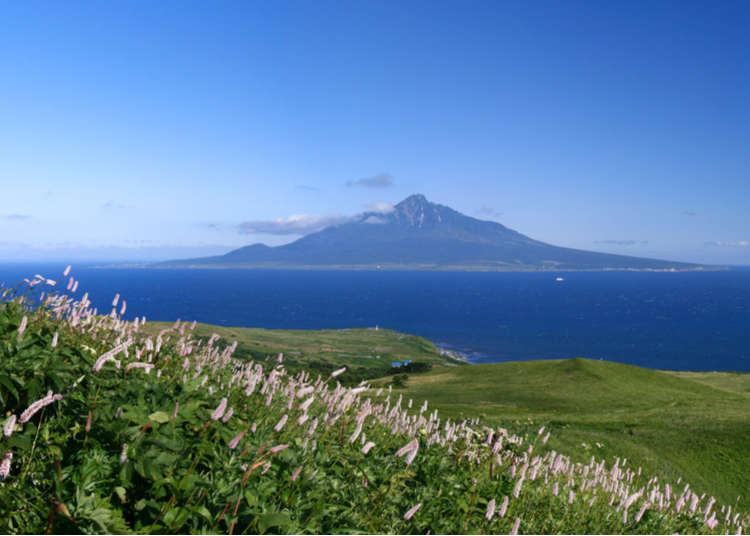 Exploring Hokkaido's Rebun Island: 7 Superb Sights in Japan's Wild North!