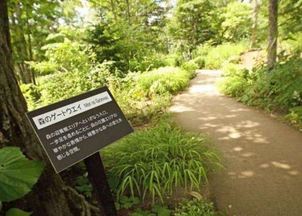 「大雪森之庭院」有療癒的花園與三國主廚的午餐讓人度過一個優雅的假期!