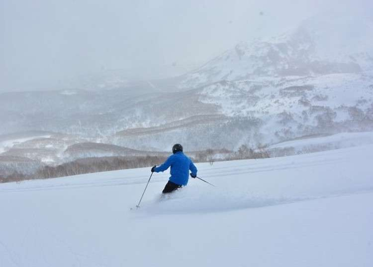 Niseko Hokkaido: Experience the luxury of extreme top-class powder snow on a CAT Tour!