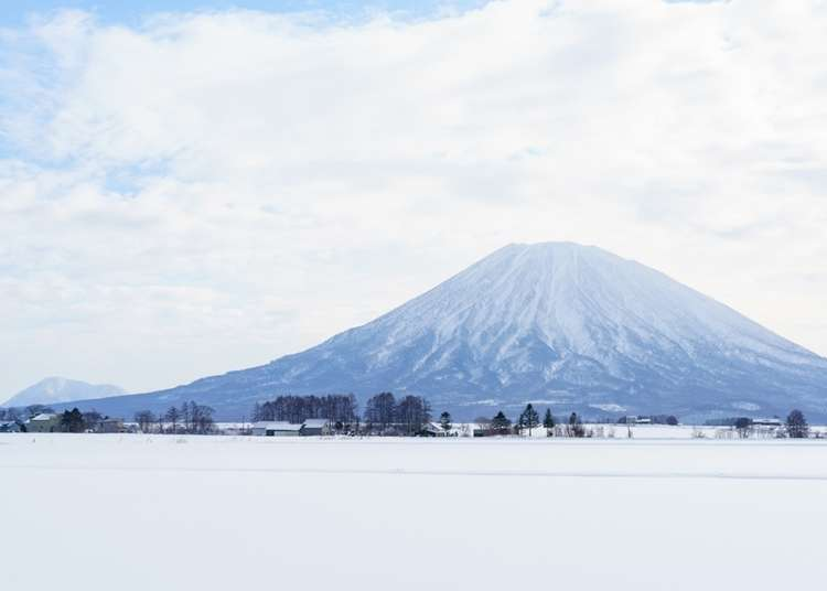 Niseko Access: Getting from Hokkaido's New Chitose Airport to the slopes of Niseko!