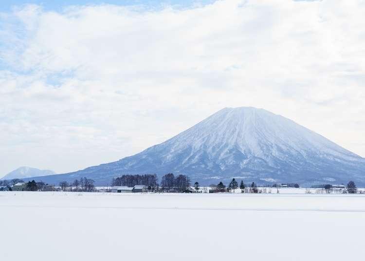 北海道の空の玄関口「新千歳空港」から「ニセコ」までのアクセス方法