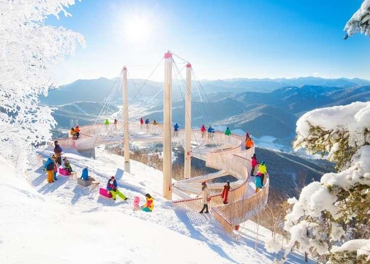 Muhyo Terrace: Incredible frozen winter landscapes in Hokkaido