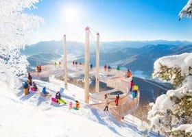 Visiting Muhyo Terrace Tomamu: Hokkaido's Incredible Frozen Landscapes!