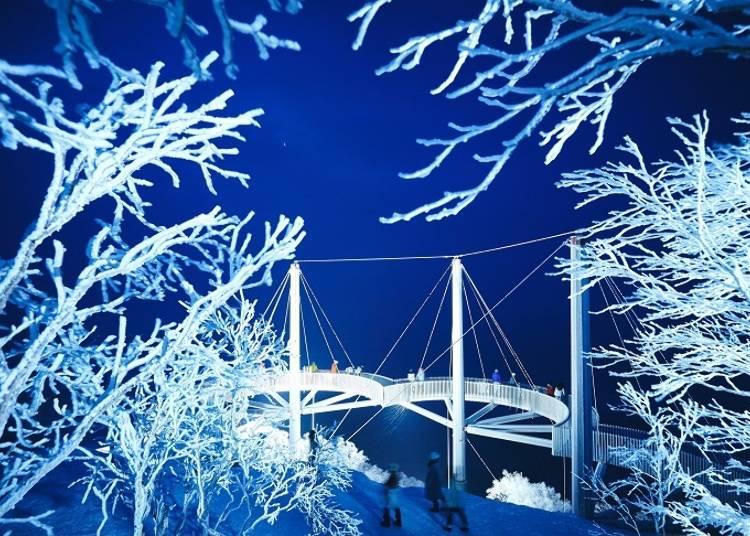 ■ライトアップされた霧氷テラスは夢のように幻想的