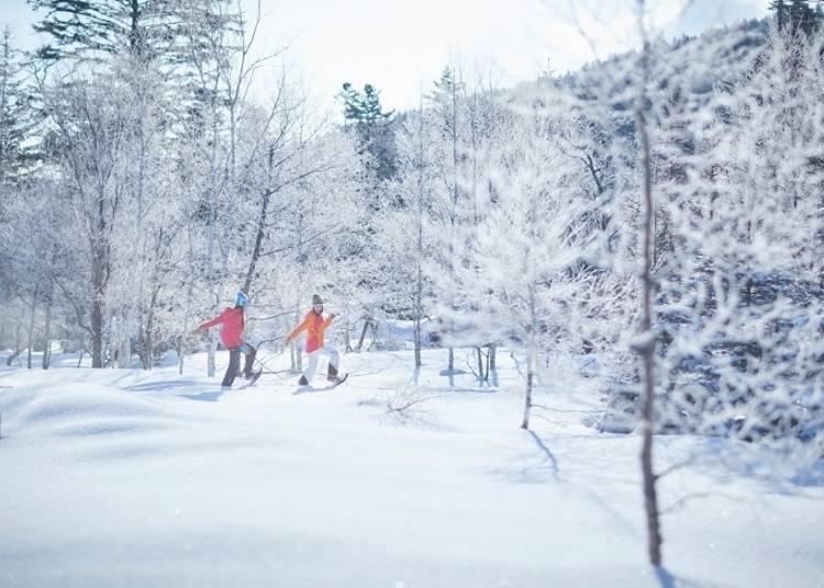 冬季雪鞋漫步