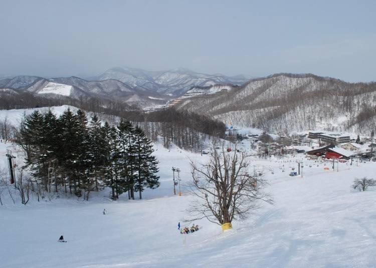 ■札幌盤溪滑雪場