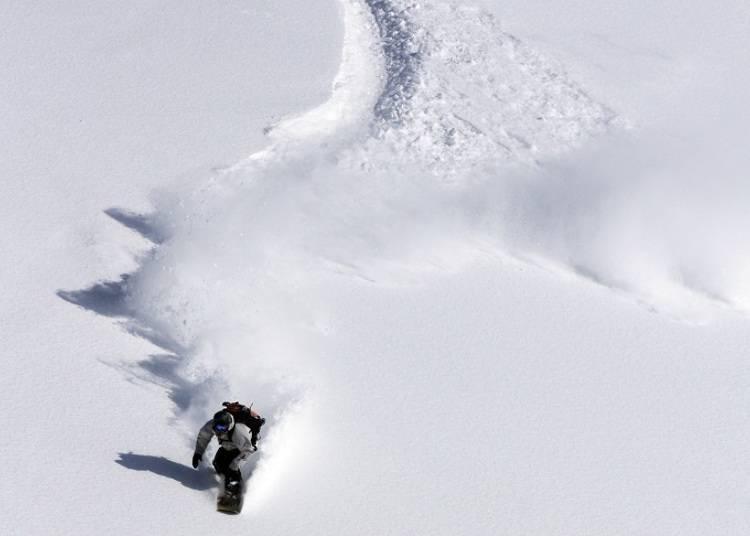■在雄大的滑雪場享受最頂級的粉雪