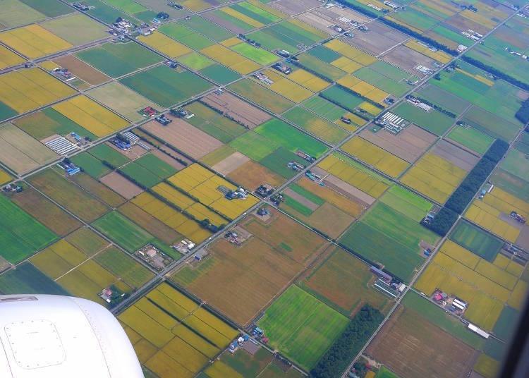 역동적인 자연은 홋카이만의 매력