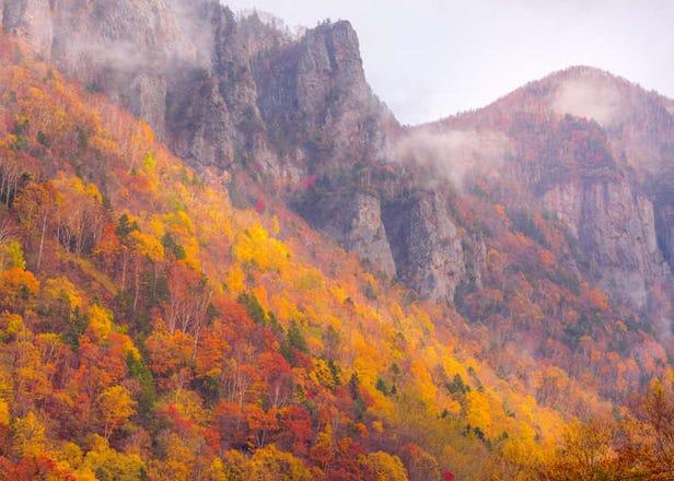 Discover Hokkaido's Scenic Sounkyo: Colorful Leaves & Snow-Covered Mount Kurodake!