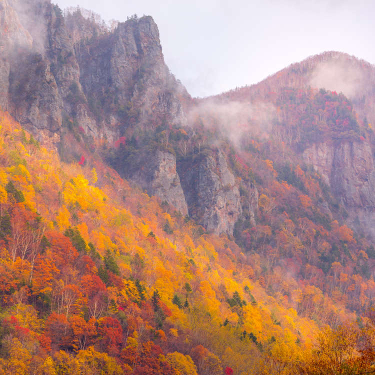 Discover Japan's Scenic North: Colorful Leaves & Snow-Covered Mountains at Sounkyo!