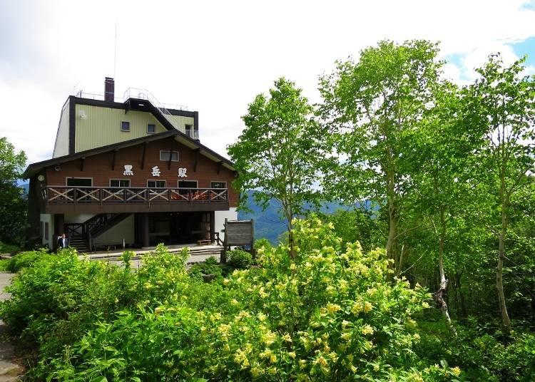「黒岳駅」に着いたら展望台からの景色を堪能しよう