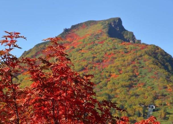 从半山腰到山顶之间开始爬到山顶吧
