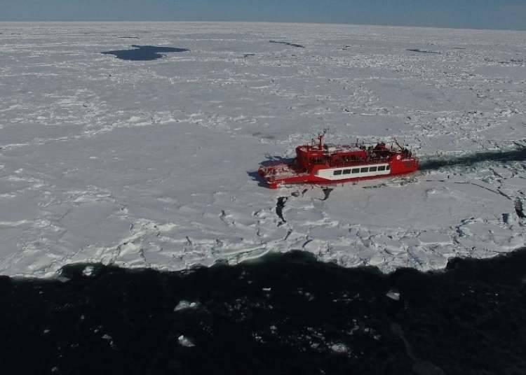 6. 近距離欣賞唯有北國海洋才有的「流冰」景觀