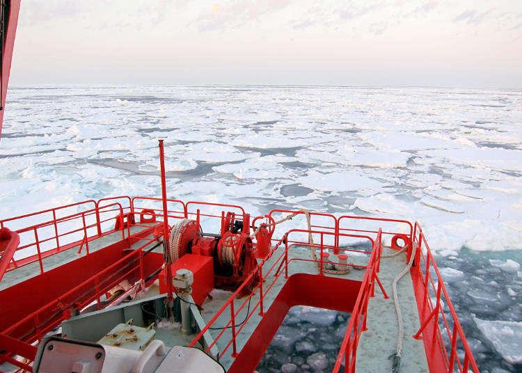 5種北海道「流冰」觀賞方法!不能錯過的冬天壯觀奇景