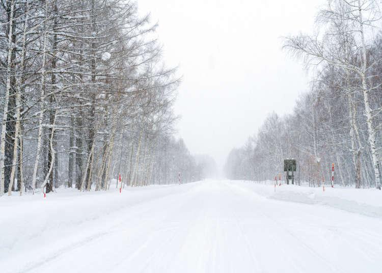 겨울 도로에 주의! 겨울철 홋카이도에서 '자주 통행금지령이 내리는 도로'와 교통수단 이용 시 유의사항