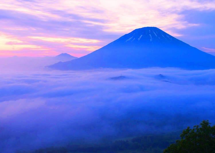 羊蹄山的壯麗景觀「羊蹄全景露台」(留壽都村)