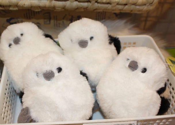 Snow Fairy: Take Home Shimaenaga