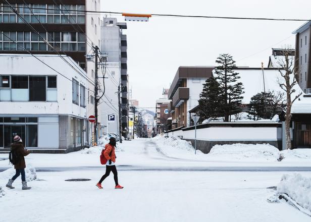 여유로운 산책! 삿포로 시내 원데이 관광 플랜