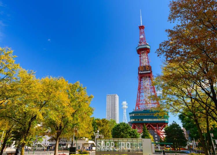 12:00 삿포로 텔레비전 타워로 이동