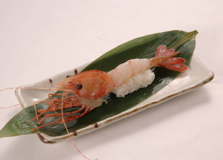 又大又美味,讓人折服!「巨大牡丹蝦(でっかいぼたんえび)」