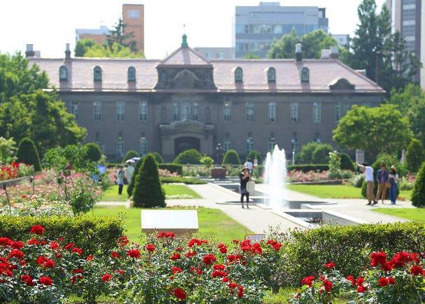 ■スタート地点:華やかなバラ園「サンク・ガーデン」