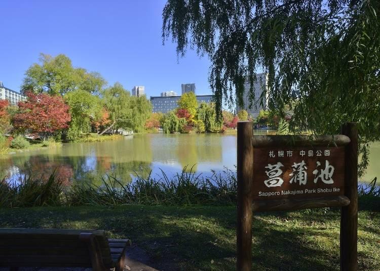 ■コース南側:日本庭園や茶室も見学できる「中島公園」