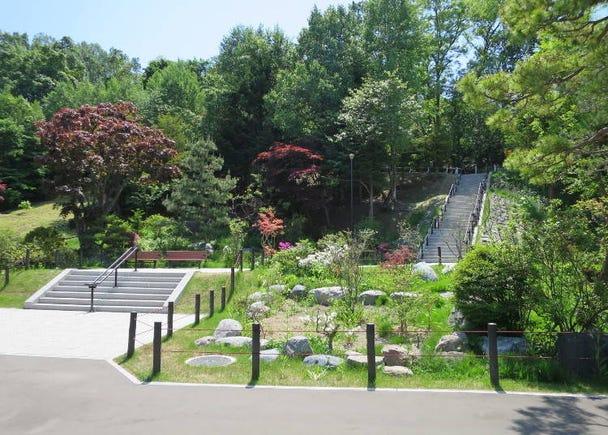 ■コース南側:豊かな緑地と2つの神社「天神山緑地」と「平岸天満宮」