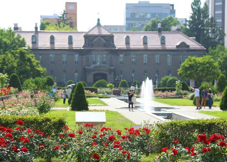 「北海道馬拉松」起跑點:華麗的玫瑰園「Sunken Garden」