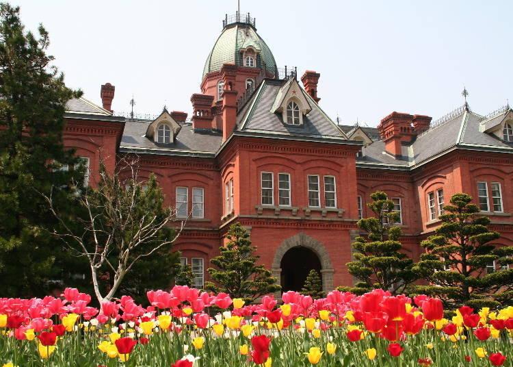 「北海道馬拉松」路線北側:以五稜星爲地標「北海道廳舊本廳舍(紅磚廳舍)」