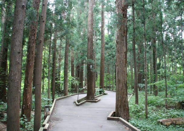 9. Climb Maruyama