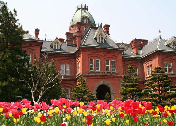 Take a Stroll! 2-Day Sapporo Sightseeing Plan Taking You Around Northern Japan's Exciting City