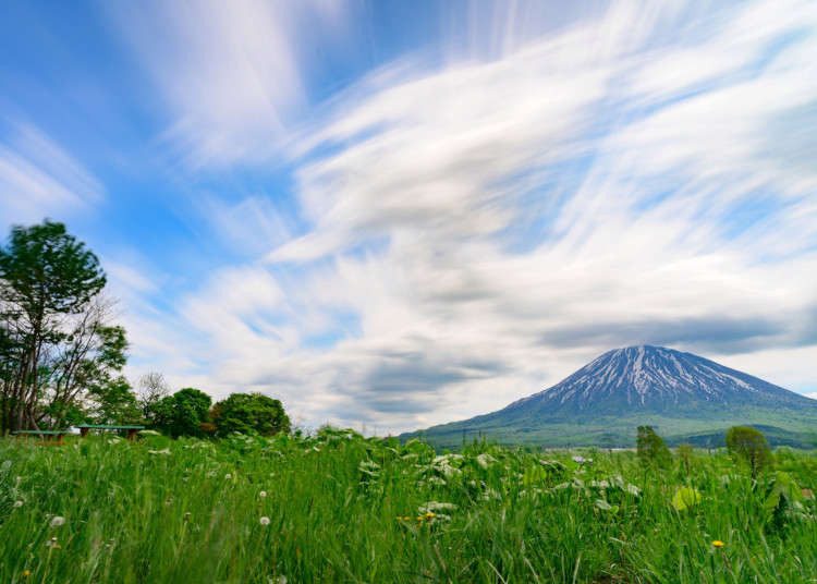 Japanese survey ranks Hokkaido as the most desirable prefecture to settle down in | LIVE JAPAN travel guide