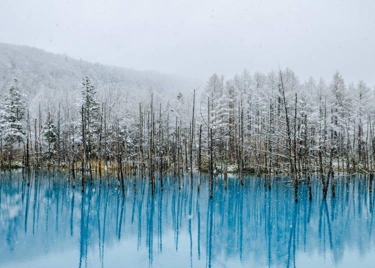 北海道冬季(12月、1月、2月):平均氣溫冰點以下!注意漫長嚴峻的北海道寒冬積雪量