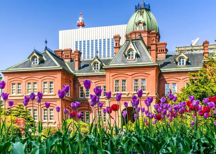 北海道春季(3月、4月、5月):3月甚至還零下、櫻花季則是要等到5月