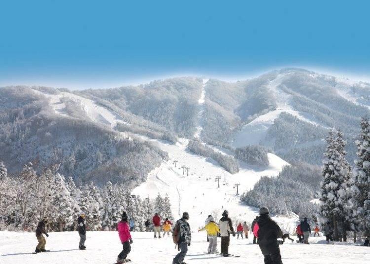 日本滑雪准备清单④准备这些东西,出游更方便