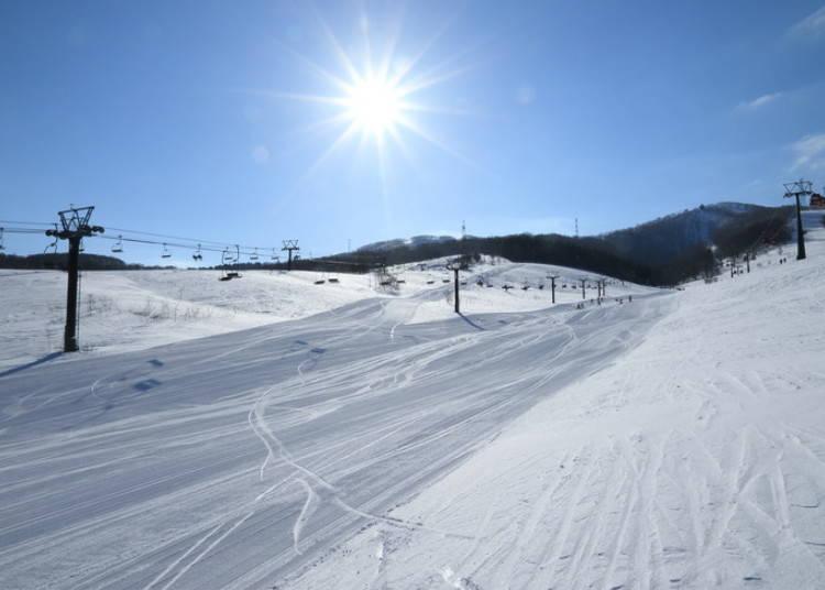 留壽都滑雪場⑦東山|EASY TRAIL滑雪道:位置方便又好滑的寬廣緩坡地