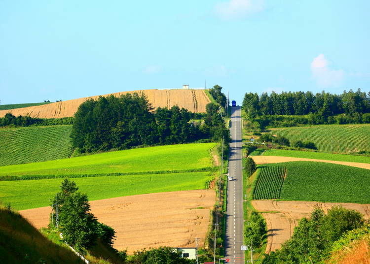 1. Are you brave enough for the Roller Coaster Road? (Kamifurano)