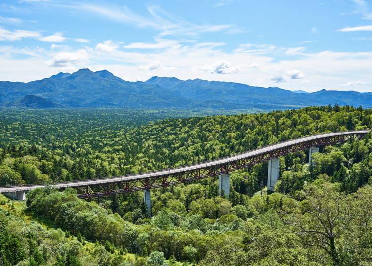 北海道自駕遊公路4. 遼闊樹海十分壯觀的「三國峠」