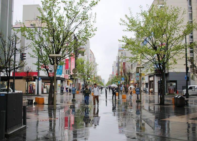 北海道夏天自由行必知5. 北海道的6月旅遊季時,出門帶傘比較安心