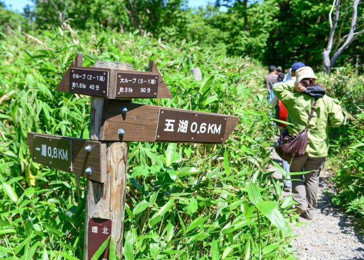 北海道夏天自由行必知8. 在山林散步時的服裝該如何準備?