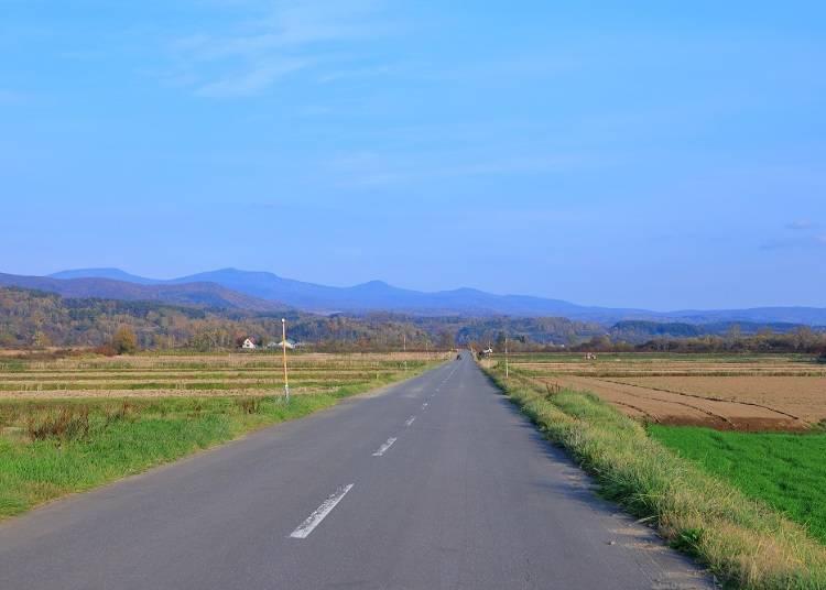 日本は左側通行&右ハンドル
