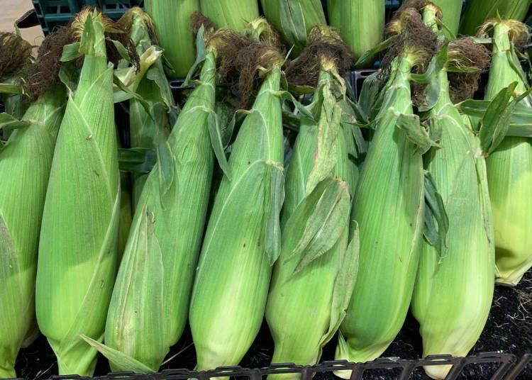 'Sold unattended?!' Hokkaido's fresh vegetables