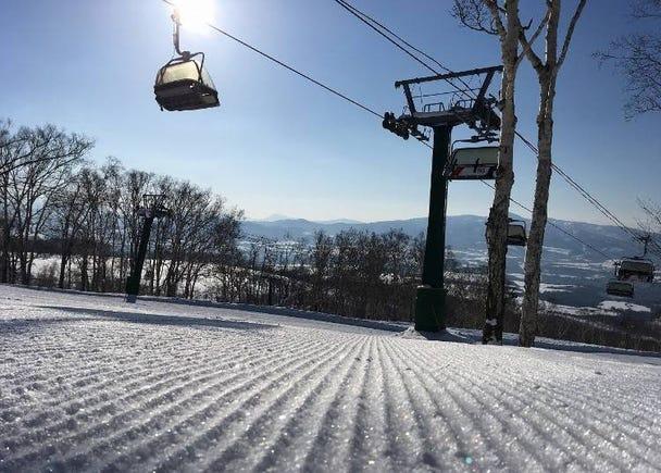 2. Winter powder at Niseko Annupuri International Ski Area