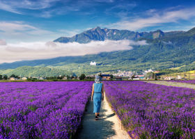 Top 10 Things To Do in Furano & Biei - Flowers & More in Japan's Gorgeous North!