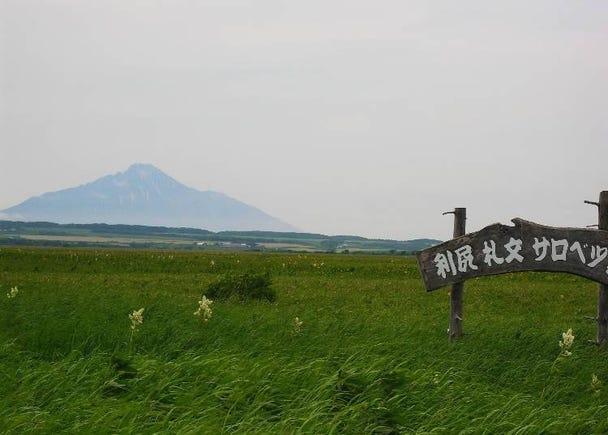1. Enjoy Rishiri Fuji on a 7-day itinerary!