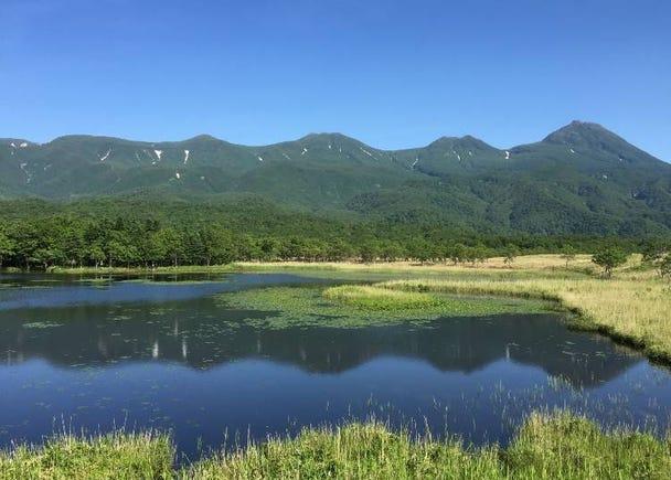 2. Enjoy Shiretoko and Ainu culture on a 7-day itinerary!