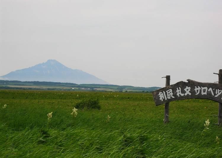 (1)6泊7日の旅程で利尻富士も楽しむ!