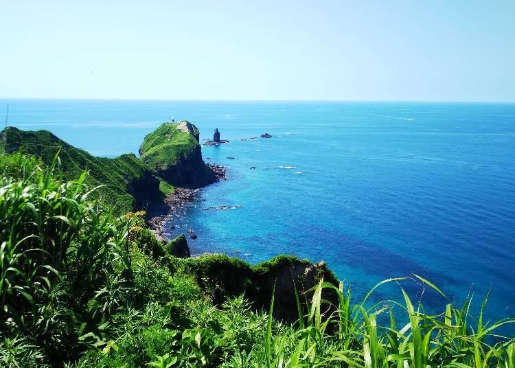 北海道8天7夜自由行之第3天:積丹絕美景色與世界知名的威士忌之旅